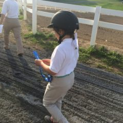 Therapeutic Riding Shows